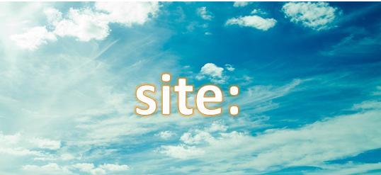 bloglogosite2