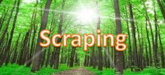 scrapingmori1